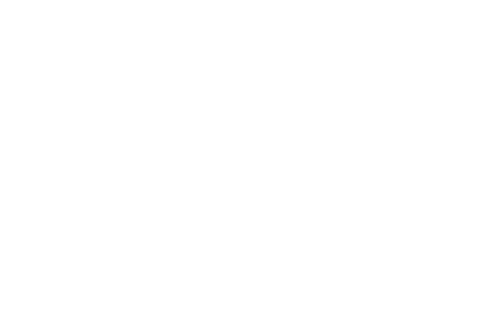 torc-logo